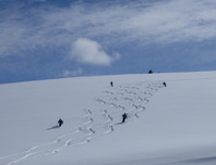 Freeride – und Skitourencamp